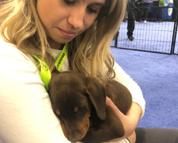 OrderMyGear 2020 The PPAI Expo Puppies